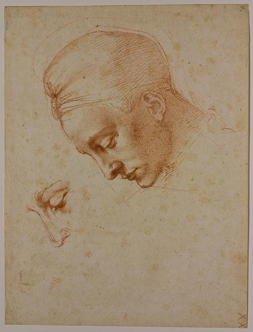 Michelangelo: Quest for Genius